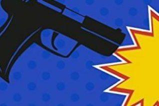 Lori L Lake's Gun Shy: Book One In The Gun Series
